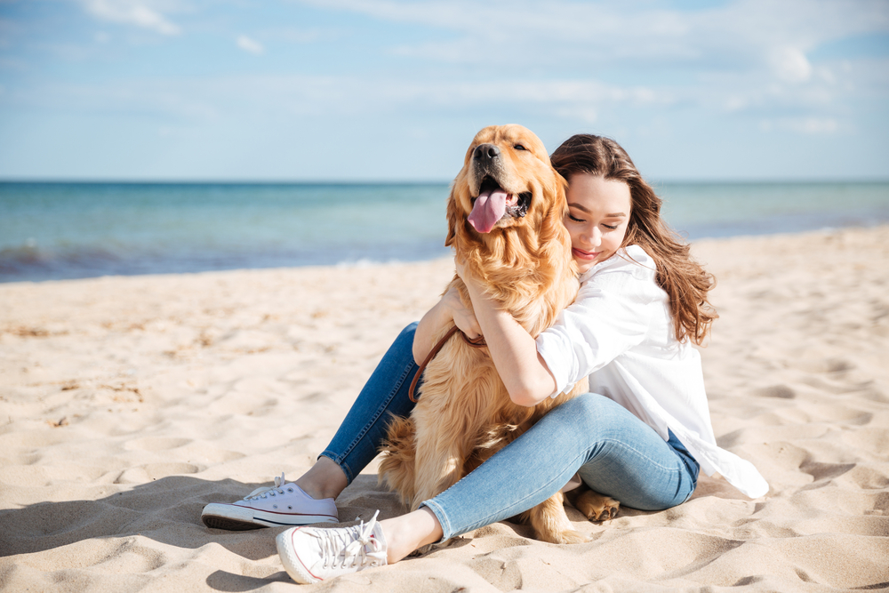 perro vacaciones costa brava