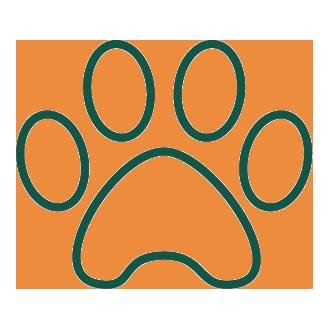 verd_icono-mascota