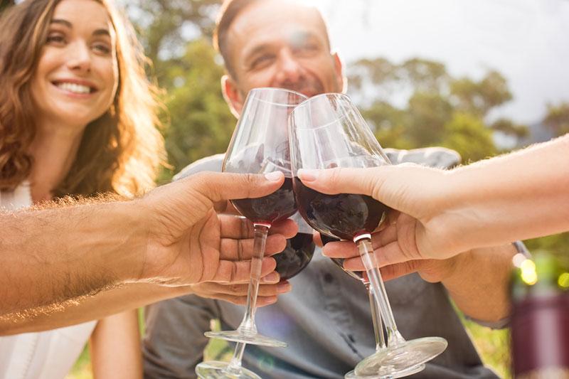 cata vinos costa brava